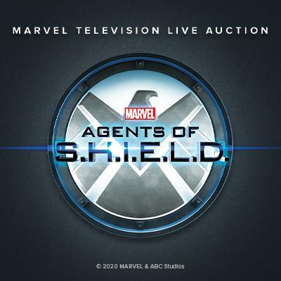 TEST LOT - Marvel's Agents of S.H.I.E.L.D. - TEST YOUR BID BUTTON NOW